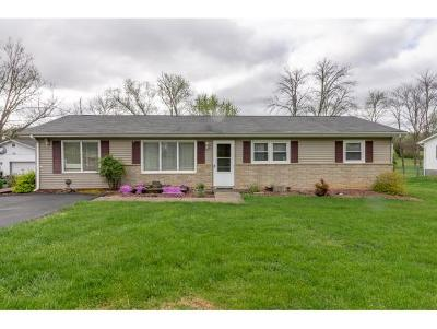 Bristol VA Single Family Home For Sale: $149,900