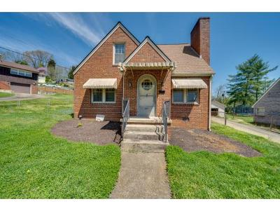 Kingsport Single Family Home For Sale: 685 Sherman Place