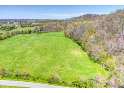 Washington-Tn County Residential Lots & Land For Sale: Bulldog Miller