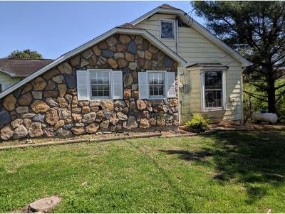 Piney Flats Single Family Home For Sale: 441 Fairview School Rd.