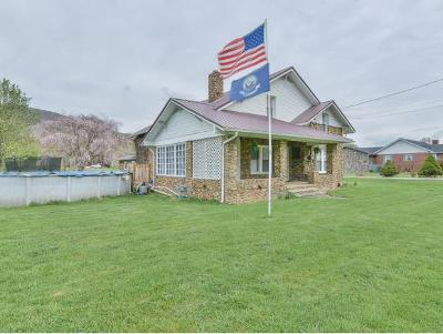Unicoi Single Family Home For Sale: 702 Massachusetts