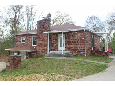 Kingsport Single Family Home For Sale: 224 Garfield Dr