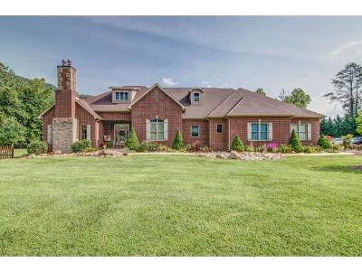 Single Family Home For Sale: 5182 Highway 19e
