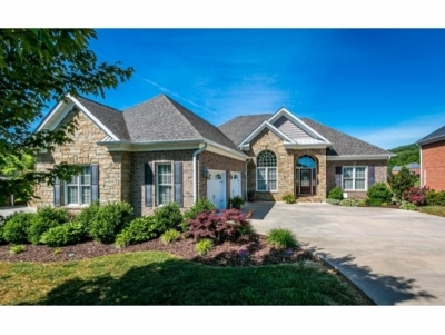 Kingsport Single Family Home For Sale: 2220 Valley Falls Court