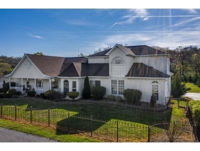 Greene County, Washington-Tn County Single Family Home For Sale: 142 Buttermilk Road