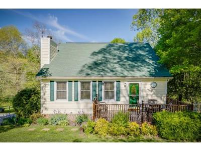 Kingsport Single Family Home For Sale: 860 Lebanon Road