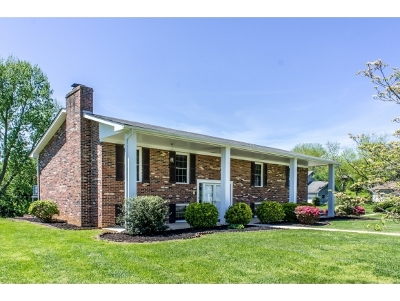 Greeneville Single Family Home For Sale: 1508 Valiant Drive