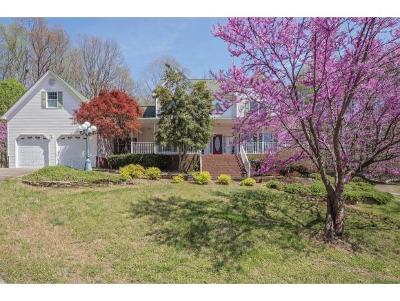 Hawkins County Single Family Home For Sale: 854 Nantucket Ave.