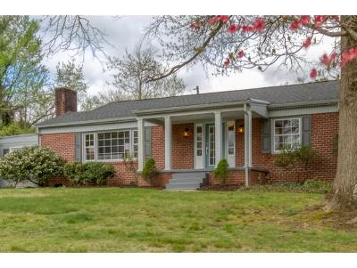Bristol Single Family Home For Sale: 1700 Holston Drive