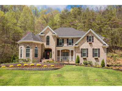 Greeneville Single Family Home For Sale: 2823 Van Hill Rd.