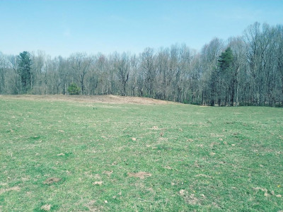 Johnson City TN Residential Lots & Land For Sale: $175,000