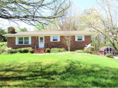 Jonesborough Single Family Home For Sale: 120 Rebel Court