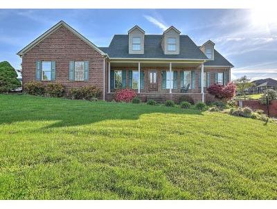 Greeneville TN Single Family Home For Sale: $359,000