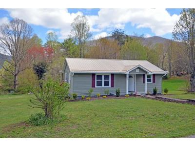 Single Family Home For Sale: 153 Greenbriar Drive