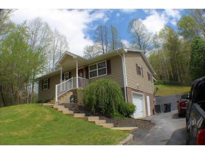 Elizabethton Single Family Home For Sale: 337 Long Hollow Rd