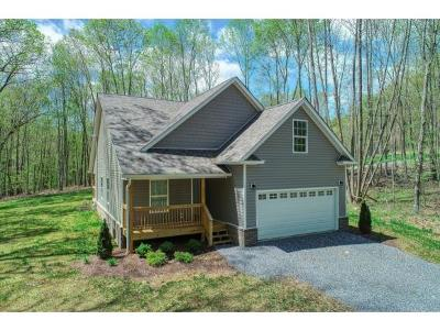Hawkins County Single Family Home For Sale: 220 Allenwood Lane