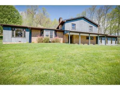Single Family Home For Sale: 249 Lakeridge Street