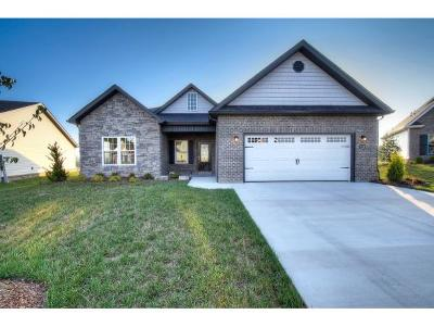 Kingsport Single Family Home For Sale: 3321 Murrayfield Way