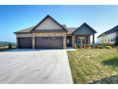 Kingsport Single Family Home For Sale: 3317 Murrayfield Way