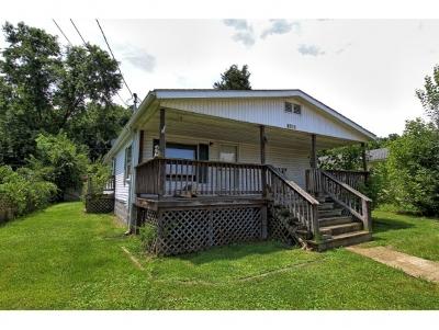 Kingsport Single Family Home For Sale: 1021 Dorothy Street