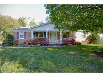 Kingsport Single Family Home For Sale: 965 Kendrick Creek