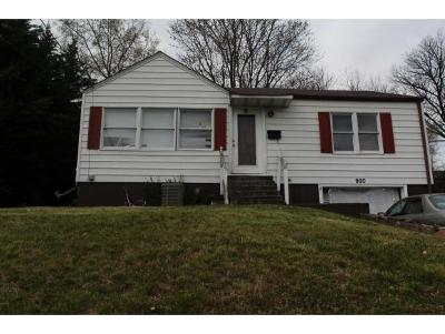 Kingsport Single Family Home For Sale: 900 Tip Top Avenue