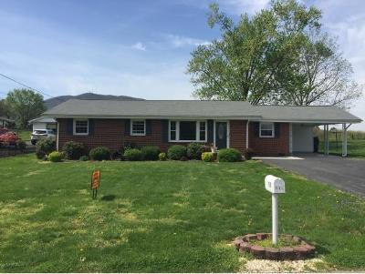 Johnson City Single Family Home For Sale: 115 Tall Oaks Circle