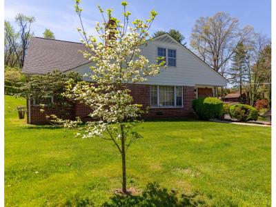 Bristol VA Single Family Home For Sale: $183,000