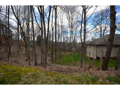 Johnson City Residential Lots & Land For Sale: 216 Shadowood Dr