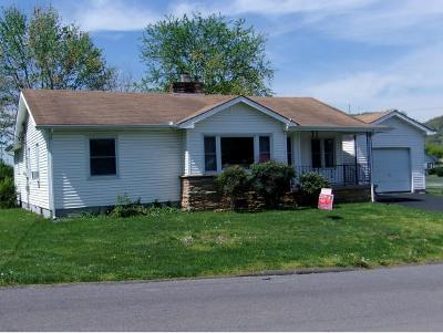 Rogersville Single Family Home For Sale: 208 Hillcrest Street