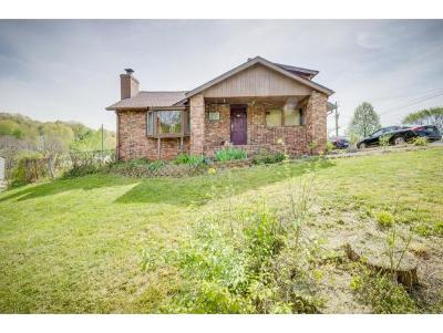 Kingsport Single Family Home For Sale: 1201 Fairview Ave