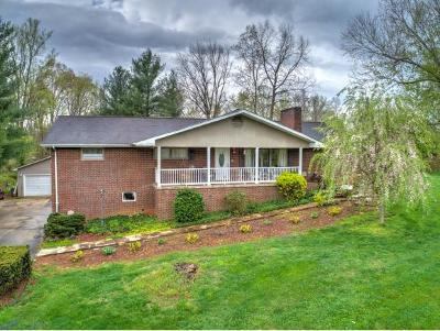 Single Family Home For Sale: 676 Tranbarger Rd