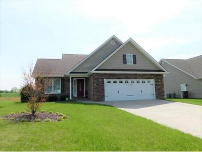 Kingsport Single Family Home For Sale: 719 Brookhaven Drive
