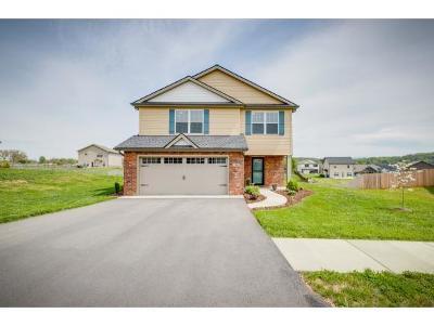 Washington-Tn County Single Family Home For Sale: 190 Miss Maude Patton Ln