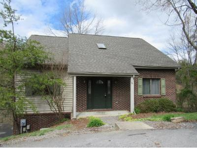 Kingsport Single Family Home For Sale: 174 Aston Ct