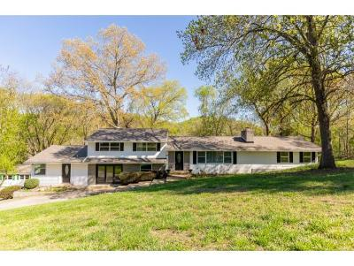Kingsport Single Family Home For Sale: 336 Historic Hills Road