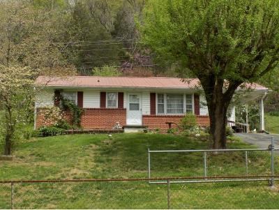Hawkins County Single Family Home For Sale: 278 Hwy 70n