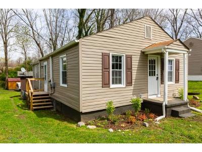 Bristol Single Family Home For Sale: 217 Stafford Street