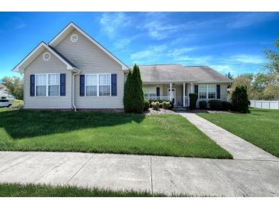 Johnson City TN Single Family Home For Sale: $239,900