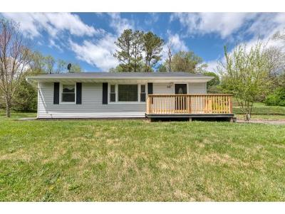 Bristol Single Family Home For Sale: 316 Cedar Valley Road
