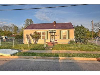 Kingsport Single Family Home For Sale: 1113 Gibson Mill Road