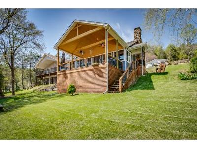 Kingsport Single Family Home For Sale: 461 Gammon