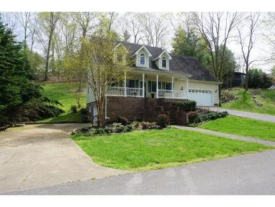 Kingsport Single Family Home For Sale: 204 Boone Ridge Drive