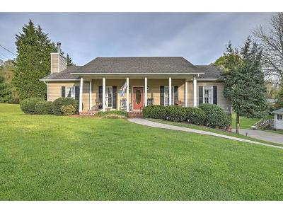 Kingsport Single Family Home For Sale: 3624 Deland Drive