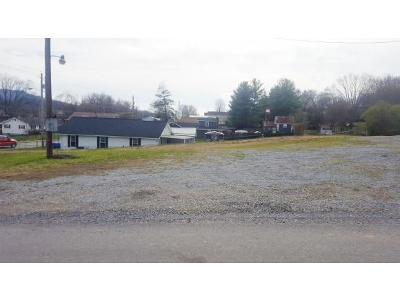 Johnson City Residential Lots & Land For Sale: 106 Jay Street