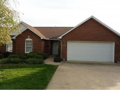 Kingsport Single Family Home For Sale: 4138 Cooks Point