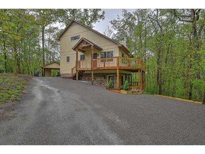 Kingsport Single Family Home For Sale: 516 Kimbark Lane