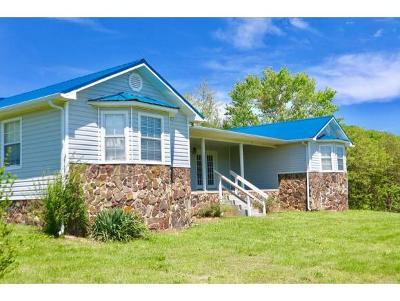 Rogersville Single Family Home For Sale: 1026 Overhill Rd