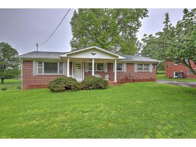Greeneville Single Family Home For Sale: 1013 Sylvan Circle