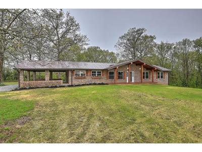 Mosheim Single Family Home For Sale: 1035 Carters Valley Road